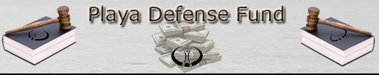 Playa Defense Fund - Providing Financial & Legal Assistance For Burners...By Burners